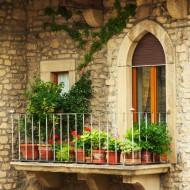 Rośliny balkonowe.